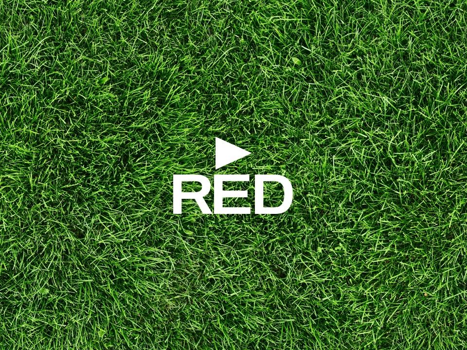 RED substitui relvado do Estádio José Alvalade