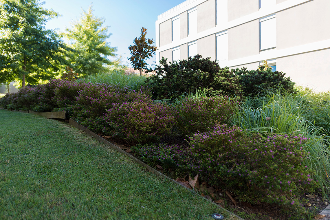boavista-gardens
